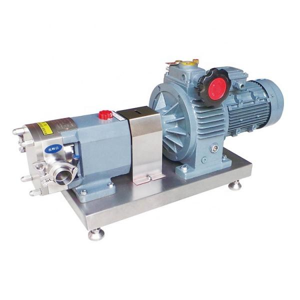Parker PV2R3-125 PV2 Series Pump #2 image