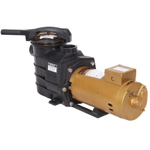 Parker SQP32-35-17-1CD-18 SQP Pump #1 image